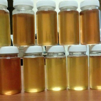 Honigproben im Labor