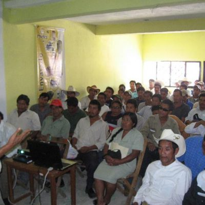 Beekeeper training for organic handling in Mexico